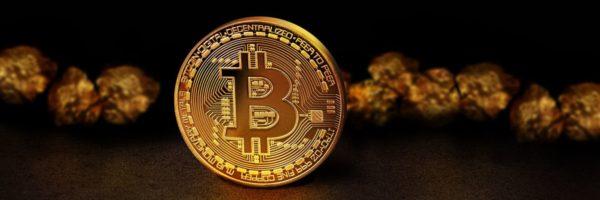 Bitcoin Börse von NiceHash gehackt